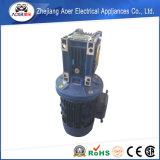 Motore elettrico a tre fasi del riduttore di CA