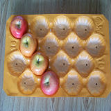 Nuevo estilo de 10 Años de Proveedor de Oro de la bandeja de manzanas de Plástico PP