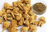 Het natuurlijke en Organische Uittreksel van Maca van het Uittreksel van het Kruid