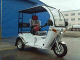 125cc deficientes motociclo de três rodas para duas pessoas