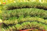 Fornecedor sintético do relvado da grama do jardim material do Polypropylene