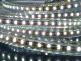세륨 2 년 보장 220V/127V 유연한 LED 밧줄 빛 (SMD2835-108LED)