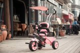 Intelligentes Trike des neues Modell-gute Qualitätskindes, Baby-Dreirad, Kind-Spielzeug-Dreirad