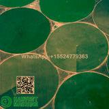Sistema de irrigación agrícola del arma de la cabeza de biela de la máquina/de la regadera de la irrigación de China