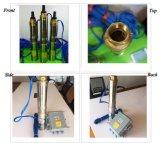 насос панели солнечных батарей розничной цены горючего воды DC 12V для добр