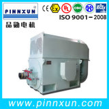 Agricultural Machine Motor 6kv IC611