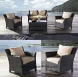 Sofà esterno poco costoso della mobilia del giardino di intera vendita impostato con la singola sede &Double (YT477-1)