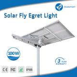 Constructeur Bluesmart tout dans une lampe solaire de route de lumière de jardin de réverbère de DEL