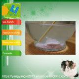 La naturaleza el tofu en la fábrica con venta de gatos