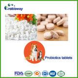 Hundehaustier-Darm-Gesundheits-kaubare Probiotic Tablette-Ergänzung
