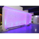 36W lumière de rondelle de mur de la haute énergie DMX RVB DEL