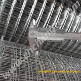 Высокого качества на заводе оцинкованной сварной проволочной сеткой