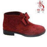 Plattform-Entwurfs-Form-reizvolle Aufladungs-Frauen-Schuhe für Winter (AB600)