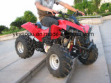 새로운 맹금류 작풍 110cc/125cc ATV