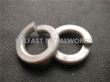 Arandela elástica DIN 127 con chapado en zinc