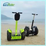 Chariot électrique de golf d'Ecorider de scooters de véhicule électrique de golf