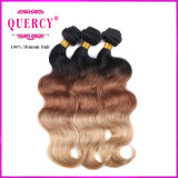 Neues Arrival Highquality und Wholesale Price 3 Tone Omber Color Body Wave Hair, Malaysian 100% Hair