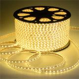 3528SMD 60LED 220Vの適用範囲が広いクリスマスの照明LEDロープライト
