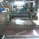 De Plaat van het roestvrij staal/het Blad van het Roestvrij staal met Grootte 1220X2440mm