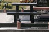 Tegel van de Steen van het Graniet van Binzhou de Zwarte