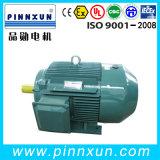 Ибо3 Series (IE3), высокоэффективный электродвигатель 110 квт