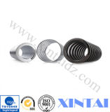 High Quality의 특별한 Shape Compression Spring