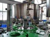 Hete het Vullen van het Citroensap van het Fruit van de Fles van het glas Machine