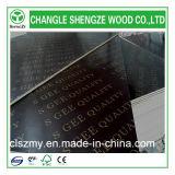 La película impresa de la madera contrachapada de la construcción de la insignia hizo frente a la madera contrachapada