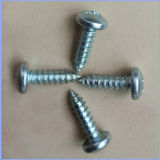 Pan Head Phillips Small Self Tapping Screw Factory Direct