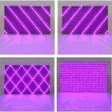 Matriz ao ar livre roxa 320*160mm do módulo 32X16 do indicador do diodo emissor de luz P10 impermeáveis para a tela roxa do desdobramento do diodo emissor de luz da cor-de-rosa P10