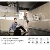 UVmdf-hoher glatter Küche-Schrank (Zh086)