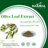 Чисто естественная прованская выдержка листьев, Oleuropein CAS: 32619-42-4 выдержка завода