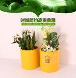 실내 OEM 스테인리스 재배자 화분 & 옥외 화분