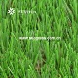 35 millimetri del giardino di svago di erba d'abbellimento ad alta densità di falsificazione (SUNQ-AL00079)