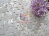 ホームのための白いシェルのモザイクは飾る(CFP139)