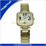 Placage à deux tons célèbre marque Mesdames Watch en acier inoxydable