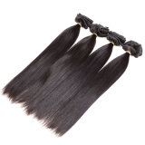 머리 연장 사람의 모발 연장 1b 똑바른 Virgin 머리핀 Ins에 있는 인도 Remy 머리 똑바른 아프리카계 미국인 클립에 클립