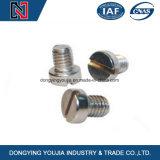Vis de machine principales plates encochées d'acier inoxydable de fournisseur de la Chine