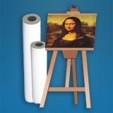 Lona de arte pura de la impresión de 380 del G/M del algodón Digitaces de la inyección de tinta