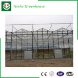 Stahlrahmen-Glasgewächshaus für Gemüse