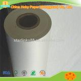 Bianco 45 al documento di tracciatore 80GSM per il sistema di taglio dell'indumento