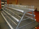 家禽の家(JFW-08)の低価格の鶏の繁殖装置