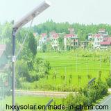 Réverbère extérieur Integrated de la lumière 100W DEL de l'éclairage LED DEL de bonne qualité