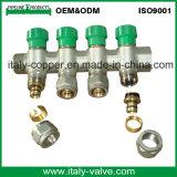 Le laiton de qualité d'OEM&ODM a modifié la tubulure bidirectionnelle (AV9068)