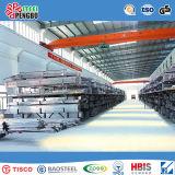 317L Tubo de acero inoxidable laminado en frío con el SGS