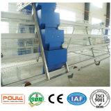 Le matériel de ferme avicole/poulet de couche met en cage le système