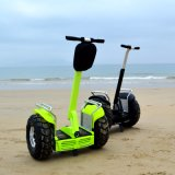 卸し売り屋外スポーツの手段の自己の電気スクーター2の車輪の一人乗り二輪馬車