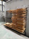 Los 48 pies de chapa de madera de aire caliente de la máquina de pelo