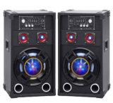 Doble sin hilos altavoces profesionales de la torre de 10 pulgadas con Bluetooth y la luz colorida
