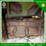 201 304의 홈 훈장 물자에 의하여 착색되는 그리는 스크린 엘리베이터 천장 엘리베이터 오두막 천장 장식 스테인리스